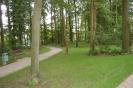 Kurwäldchen Bad Wimpfen_3