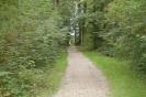 Kurwäldchen Bad Wimpfen_5